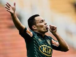 Léo Gago marcou o primeiro gol da goleada do Palmeiras contra o Guarani (Foto: Fernando Borges/ Terra)